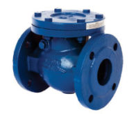 2.1/2 Art 170 PN16  Cast Iron Swing Check Valve